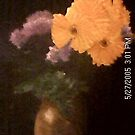 flowers 2 by jovica