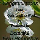Plum blossom 2 by Diana Nault
