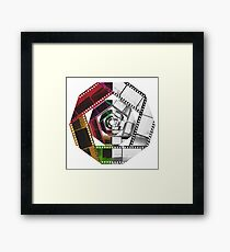 Color & Monochrome  Framed Print