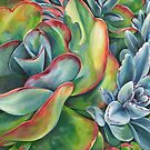 O So Succulent! by DawnEaton