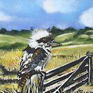 Kookaburra by CaDra