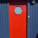 What's behind the Red Door? by DEB CAMERON