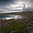 Cape Naturaliste- West Australia by Chris Paddick