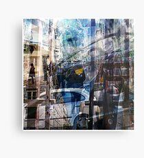 P1390063-P1390067 _XnView _GIMP Metal Print
