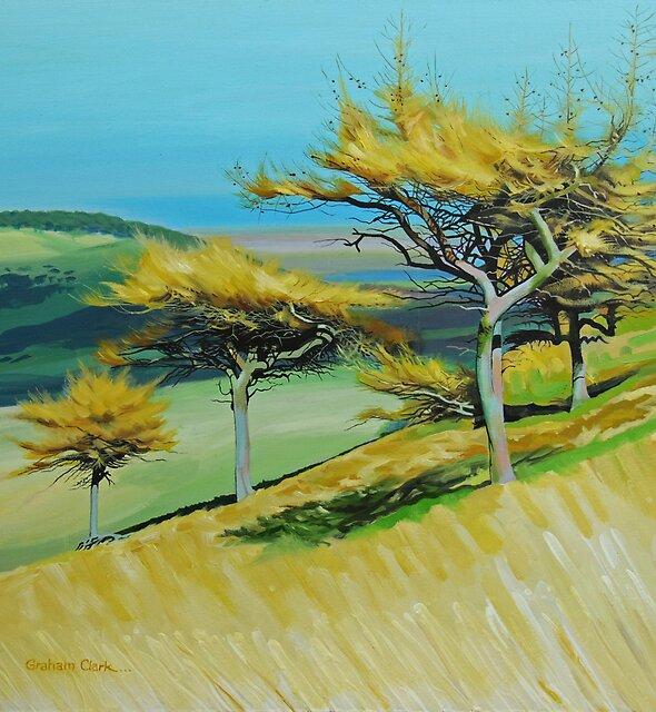 Three Trees by Graham Clark