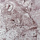 Owl out of the barn. by Robert David Gellion