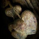 *wooden heart* by funkymarmalade