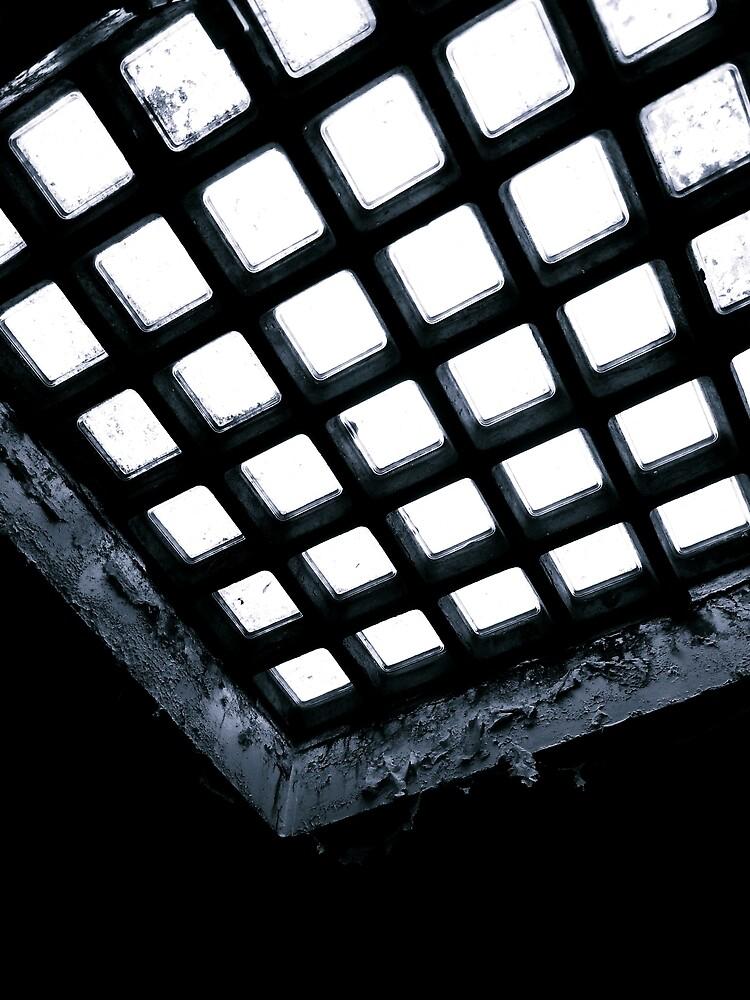 Skylight ~ Buckston Browne Farm  by Josephine Pugh