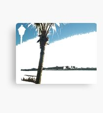 palm tree by the sea Canvas Print
