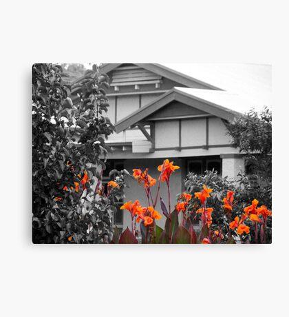 A little garden colour Canvas Print