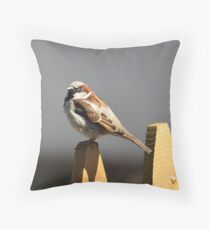 House sparrow sits on a picket fence Throw Pillow