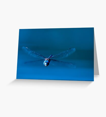 Funny Face Dragonfly Greeting Card