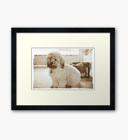 Hand over the toys or I'm leaving now! Framed Print