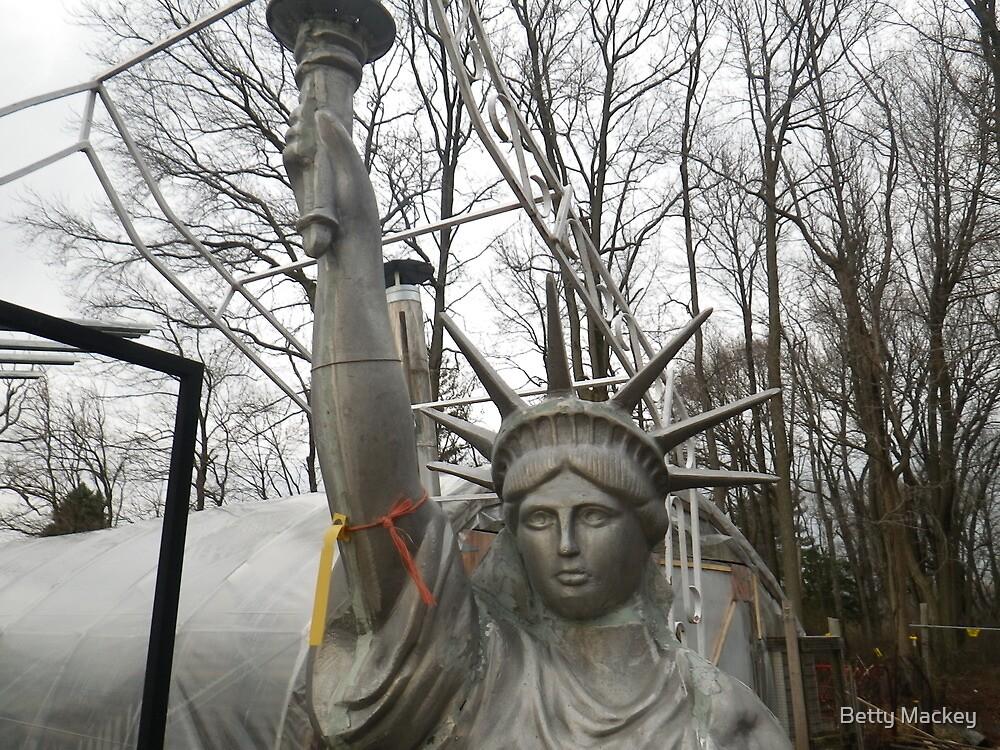 Lady Liberty in New Jersey by Betty Mackey