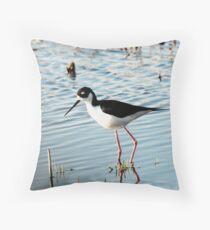 Black-necked Stilt Feeding Throw Pillow
