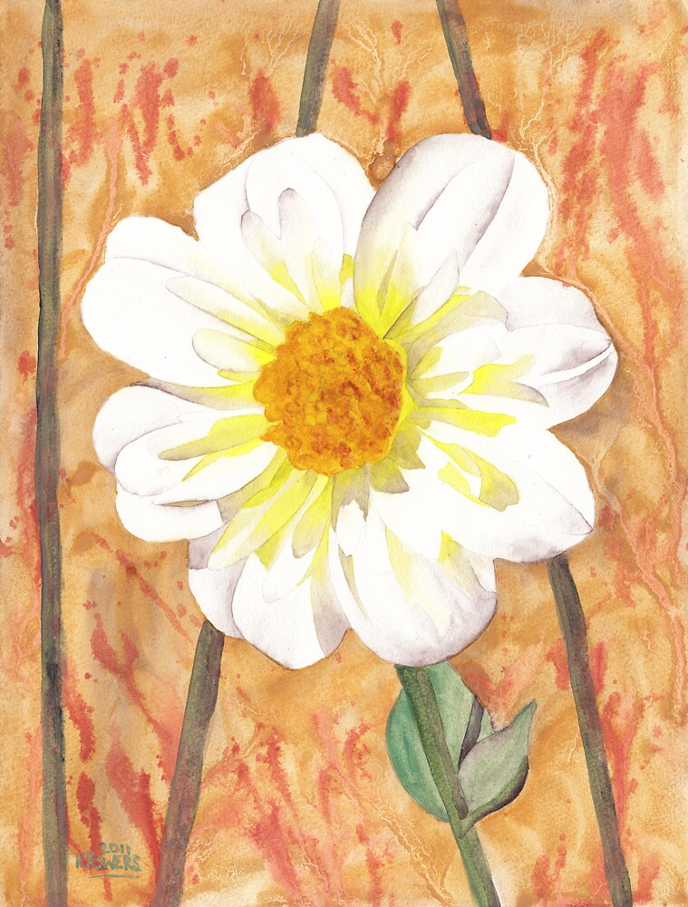 Single White Flower by Ken Powers
