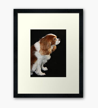 My Time To Shine Framed Print