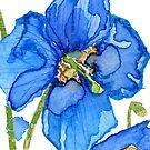 Blue Poppy by Carol Kroll