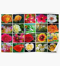 Floral collage 1 Poster