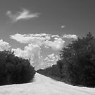 Country road by Larry  Grayam