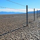 Fence Along Dry Lakebed by Tom Deters