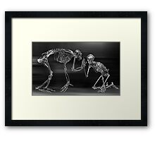 Framed Print