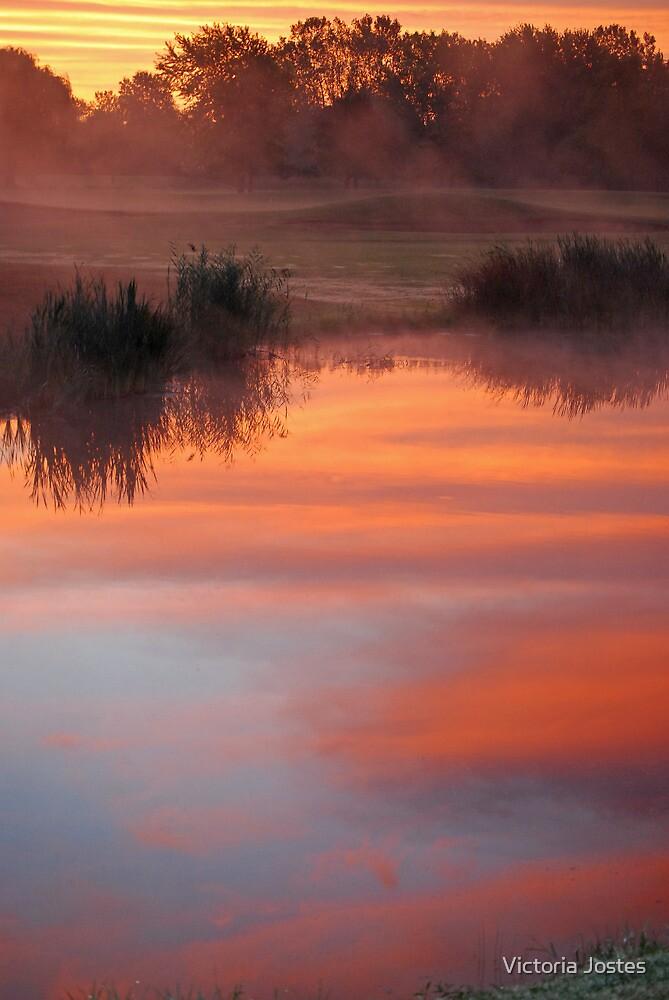 Dawn in the Mist by Victoria Jostes