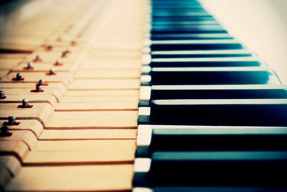 Piano Keyboard by Darius Narmontas