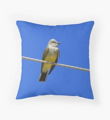 Western Kingbird ~ Adult Throw Pillow