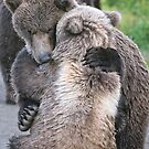 Sometimes we all just need a little Bear Hug by Chris Perry