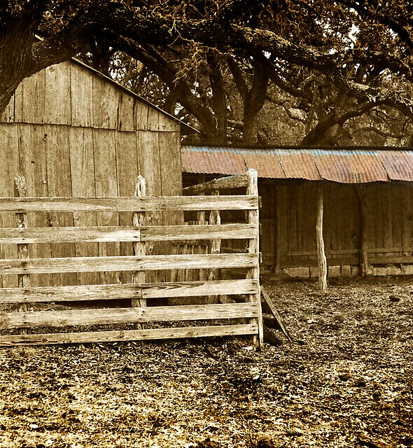 """Old """"Kraal""""  by Colin Bester"""