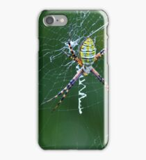 A Spider Weaves Its Web iPhone Case/Skin