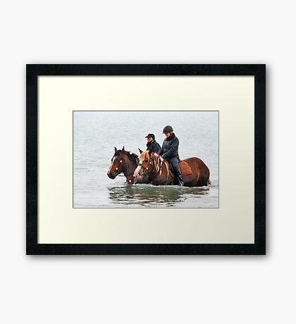 Wet horse legs..... Framed Print