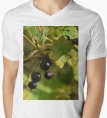 Black Currant V-Neck T-Shirt