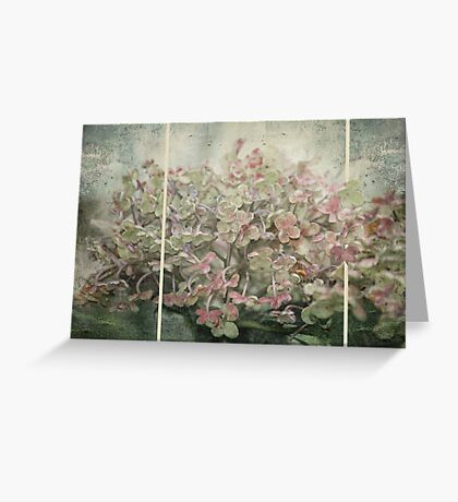 ~ Lighter Shades of Pale ~ Greeting Card