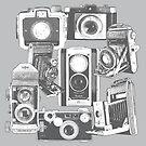 Vintage Camera Collage by RetroArtFactory