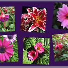 Pink Summer Flowers Collage on Purple Background von BlueMoonRose