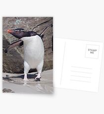 Happy Feet! Postcards