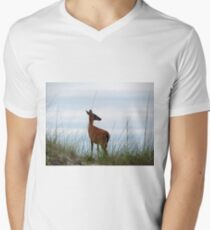Deer Checking Out The Beach T-Shirt