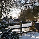 Post Christmas - Moorhaven, South Dartmoor by moor2sea