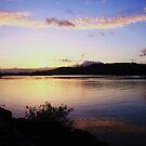 twilight on tweed by gail woodbury