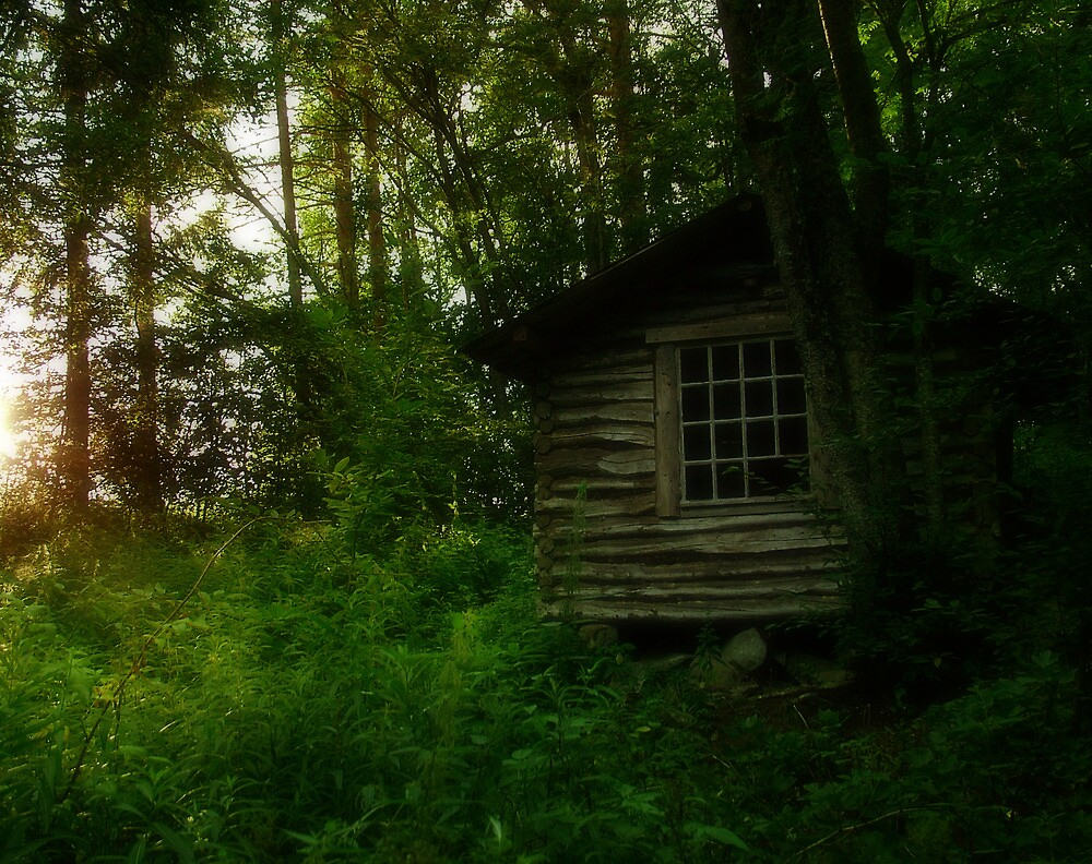 Shack by Toni Holopainen