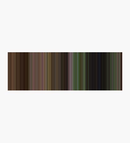 Moviebarcode: The Wizard of Oz (1939) [Simplified Colors] Photographic Print