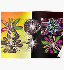 FSK Flower Flame Variations Montage Poster