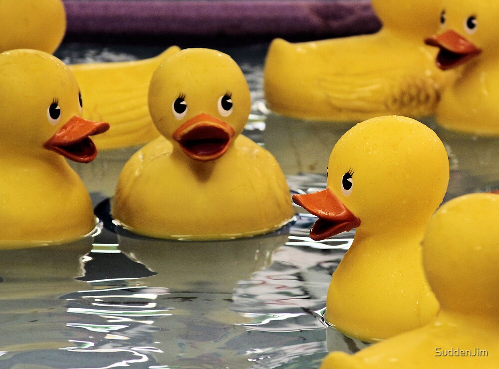 Who Wants A Rubber Ducky? by SuddenJim