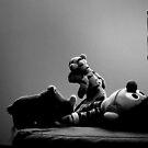 Ernie, don't be a hero... by Ian Yang (mitrm)