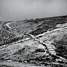 Camino en Isla del Sol by Constanza Barnier