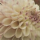 Vintage Dahlia by Terrie Taylor