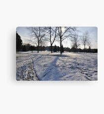 Snow & Trees Canvas Print