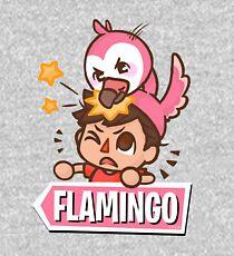 Flamingo Cartoon Kids Pullover Hoodie
